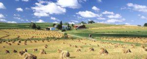 Scenic Amish Country Ohio